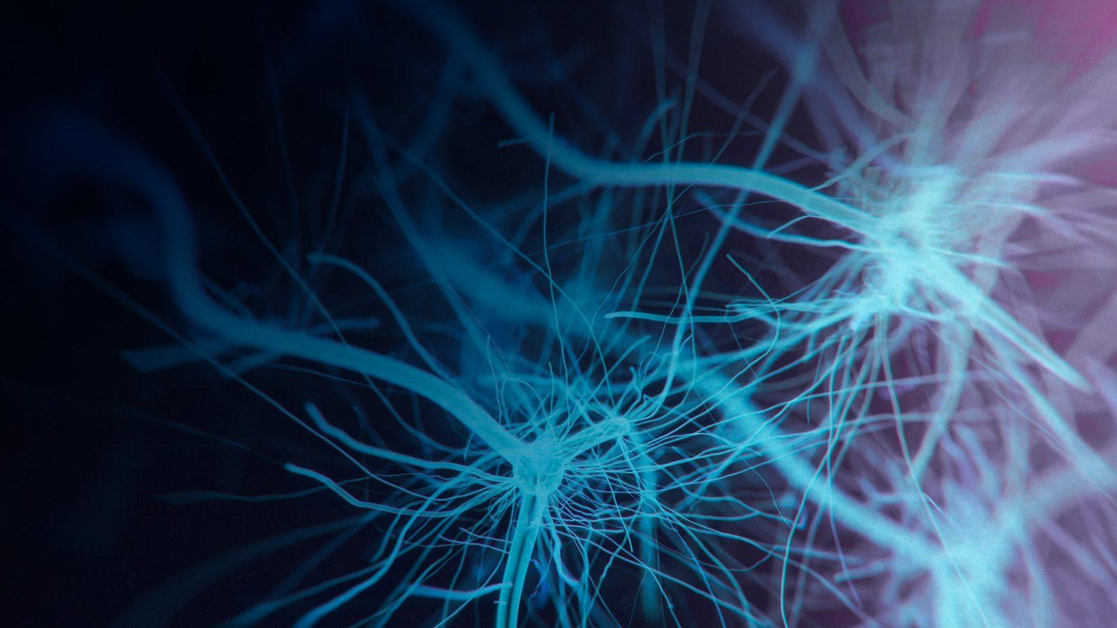 Neurocirujano en CDMX